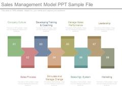 Sales Management Model Ppt Sample File