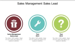 Sales Management Sales Lead Ppt PowerPoint Presentation Show Tips Cpb