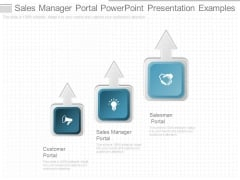Sales Manager Portal Powerpoint Presentation Examples