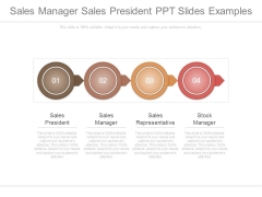 Sales Manager Sales President Ppt Slides Examples
