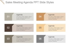 Sales Meeting Agenda Ppt PowerPoint Presentation Summary