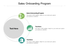 Sales Onboarding Program Ppt PowerPoint Presentation Styles Icons Cpb