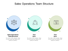 Sales Operations Team Structure Ppt PowerPoint Presentation Summary Gallery Cpb
