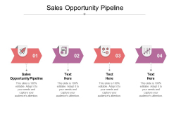 Sales Opportunity Pipeline Ppt PowerPoint Presentation Visual Aids Ideas Cpb
