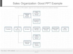 Sales Organization Good Ppt Example