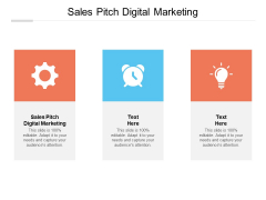 Sales Pitch Digital Marketing Ppt PowerPoint Presentation Infographic Template Icons Cpb