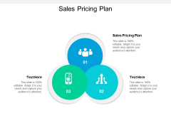 Sales Pricing Plan Ppt PowerPoint Presentation File Ideas Cpb