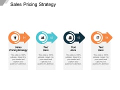 Sales Pricing Strategy Ppt PowerPoint Presentation Gallery Slide Cpb