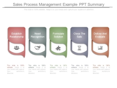 Sales Process Management Example Ppt Summary