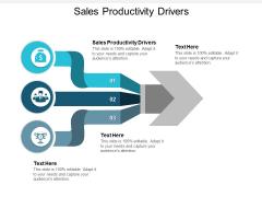 Sales Productivity Drivers Ppt PowerPoint Presentation Slides Picture Cpb