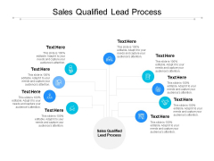 Sales Qualified Lead Process Ppt PowerPoint Presentation Infographic Template Rules Cpb