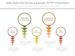 Sales Roles And Structure Example Of Ppt Presentation