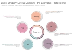 Sales Strategy Layout Diagram Ppt Examples Professional