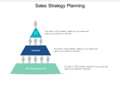Sales Strategy Planning Ppt PowerPoint Presentation Professional Slide Download Cpb