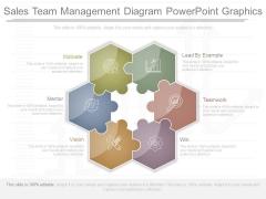 Sales Team Management Diagram Powerpoint Graphics