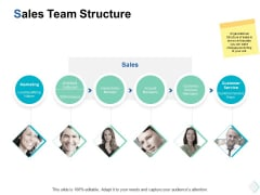 sales team structure ppt powerpoint presentation gallery introduction