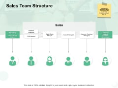 Sales Team Structure Ppt PowerPoint Presentation Model Themes