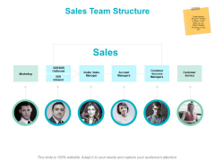 Sales Team Structure Strategy Ppt PowerPoint Presentation Portfolio Maker