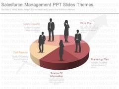 Salesforce Management Ppt Slides Themes