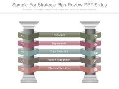 Sample For Strategic Plan Review Ppt Slides
