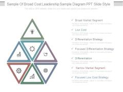 Sample Of Broad Cost Leadership Sample Diagram Ppt Slide Style