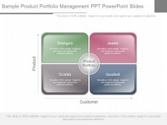 Sample Product Portfolio Management Ppt Powerpoint Slides