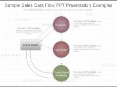 Sample Sales Data Flow Ppt Presentation Examples