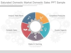 Saturated Domestic Market Domestic Sales Ppt Sample
