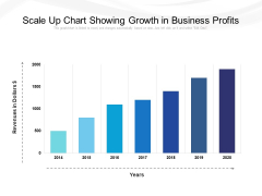 Scale Up Chart Showing Growth In Business Profits Ppt PowerPoint Presentation File Example PDF
