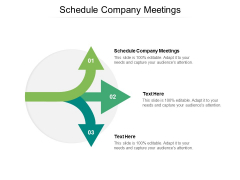 Schedule Company Meetings Ppt PowerPoint Presentation Model Good Cpb