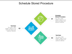 Schedule Stored Procedure Ppt PowerPoint Presentation Icon Sample Cpb Pdf