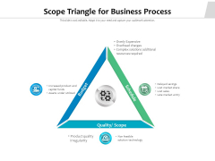 Scope Triangle For Business Process Ppt PowerPoint Presentation Summary Example File PDF