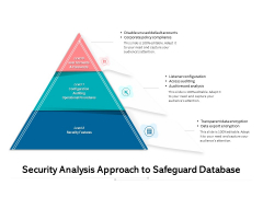 Security Analysis Approach To Safeguard Database Ppt PowerPoint Presentation Show Designs PDF