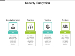 Security Encryption Ppt PowerPoint Presentation Layouts Cpb