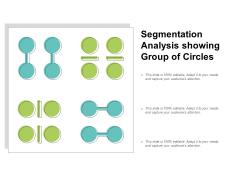 Segmentation Analysis Showing Group Of Circles Ppt PowerPoint Presentation Portfolio Mockup