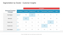 Segmentation By Cluster Customer Insights Ppt Infographics Templates PDF