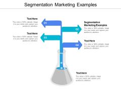 Segmentation Marketing Examples Ppt PowerPoint Presentation Professional Example Cpb
