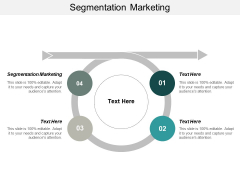 Segmentation Marketing Ppt PowerPoint Presentation Gallery Infographic Template Cpb