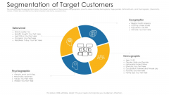 Segmentation Of Target Customers Ppt Infographic Template Gridlines PDF