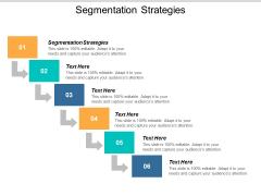 Segmentation Strategies Ppt PowerPoint Presentation Show Objects Cpb
