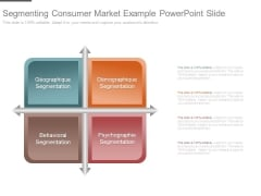 Segmenting Consumer Market Example Powerpoint Slide