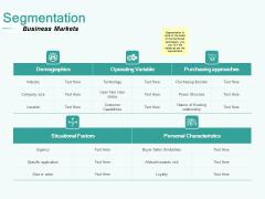 Segmenting User Market Segmentation Demographics Ppt PowerPoint Presentation Show Brochure PDF