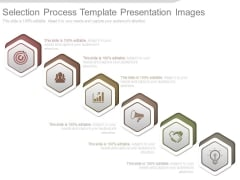 Selection Process Template Presentation Images