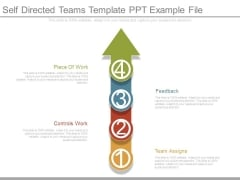 Self Directed Teams Template Ppt Example File