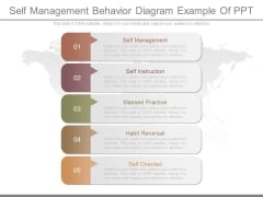 Self Management Behavior Diagram Example Of Ppt