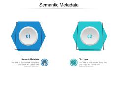 Semantic Metadata Ppt PowerPoint Presentation Outline Show Cpb