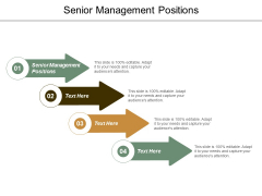 Senior Management Positions Ppt Powerpoint Presentation Layouts Guidelines Cpb