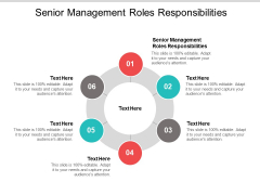 Senior Management Roles Responsibilities Ppt PowerPoint Presentation Outline Guide Cpb