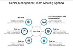 Senior Management Team Meeting Agenda Ppt PowerPoint Presentation Outline Example File Cpb