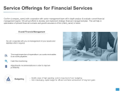 Service Offerings For Financial Services Budgeting Ppt PowerPoint Presentation Professional Show